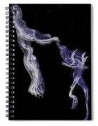 Dancin' Fools Spiral Notebook