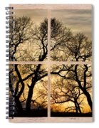 Dancing Forest Trees Picture Window Frame Photo Art View Spiral Notebook