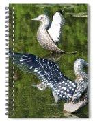 Dancing Loons Spiral Notebook