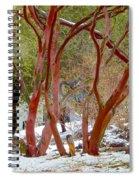 Dancing Manzanitas On The Hillside In Park Sierra-california Spiral Notebook