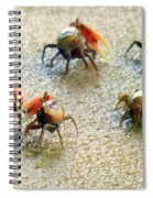 Dancing Of The Fiddlers Spiral Notebook