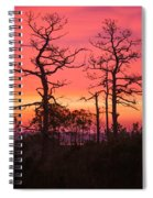 Dancing Trees Into The Fire Spiral Notebook