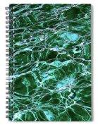Dancing Water 8 Spiral Notebook