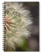 Dandelion Art - So It Begins - By Sharon Cummings Spiral Notebook