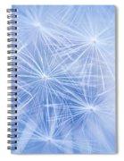 Dandelion Atmosphere Spiral Notebook