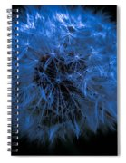 Dandelion Blues Spiral Notebook