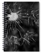Dandelion Burst Spiral Notebook