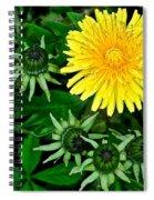 Dandelion Farm Spiral Notebook