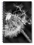 Dandelion Glow Spiral Notebook