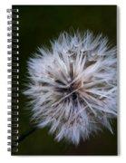 Dandelion In Green Spiral Notebook