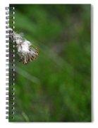 Dandelion In The Wind Spiral Notebook