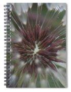 Dandelion Macro Spiral Notebook