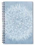 Dandelion Marco Abstract Blue Spiral Notebook