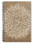 Dandelion Marco Abstract Brown Spiral Notebook