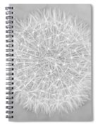 Dandelion Marco Abstract Gray Spiral Notebook