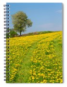 Dandelion Meadow And Alone Tree  Spiral Notebook