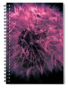 Dandelion Red Spiral Notebook
