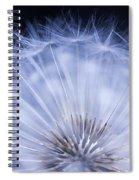 Dandelion Rising Spiral Notebook