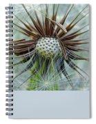 Dandelion Seed Puff Spiral Notebook
