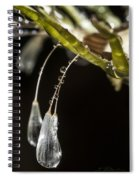 Dandelion Tears Spiral Notebook