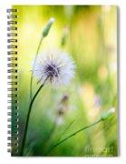Dandelion Wishes Spiral Notebook