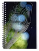 Dangerous Beauty Spiral Notebook