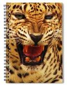 Dangerous Teeth Spiral Notebook