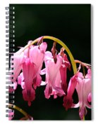 Dangle Spiral Notebook