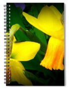 Dangling Daffodils Spiral Notebook
