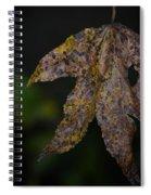 Dangling Dark Sweetgum Spiral Notebook