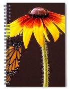 Dangling Monarch Spiral Notebook
