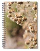 Dangling Thrift Spiral Notebook
