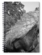 Dante In Black And White Spiral Notebook