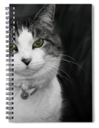 Dare To Look Into My Green Eyes Spiral Notebook