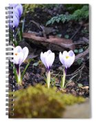Daring To Grow Spiral Notebook