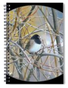 Dark- Eyed Junco Spiral Notebook