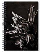 Dark Flower Spiral Notebook