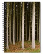 Dark Forest At Kielder Spiral Notebook
