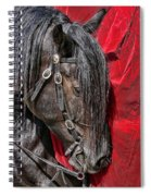Dark Horse Against Red Dress Spiral Notebook