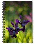 Dark Irises Spiral Notebook