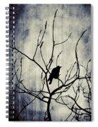 Crow In Dark Lights Spiral Notebook