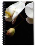 Dark Orchid Spiral Notebook