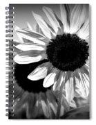 Dark Petals Spiral Notebook