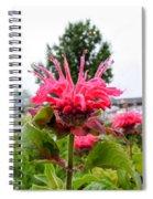 Dark Pink Bergamot Spiral Notebook