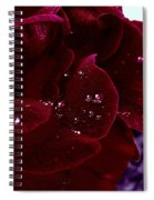 Dark Red Rose Spiral Notebook