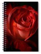 Dark Red Rose Spiral Notebook