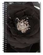 Dark Rose Spiral Notebook