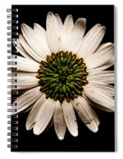 Dark Side Of A Daisy Square Spiral Notebook