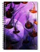 Dark Side Of The Moon 5d24939 Square Spiral Notebook