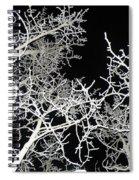 Dark Sun Spiral Notebook